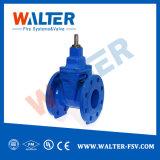 Klep van de Poort van het Gietijzer van de Fabrikant Dn250 van China De Van een flens voorzien voor Water