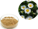 Extrait normal Parthenolide 98% de fleur de 100% Feverfew