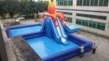 Het dierlijke Park van het Water van de pool Opblaasbare voor Pret in de Zomer