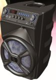 PA 무선 휴대용 능동태 8 15 인치 USB Karaoke 다중 매체 Bluetooth 트롤리 스피커