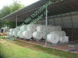 China PS de la bandeja de espuma de la línea de producción de envases de plástico que hace la máquina