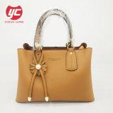 Yc-H138 de nieuwe Handtas van de Vrouwen van de Zak van het Leer van de Aankomst Unieke Echte In het groot Dame Bag