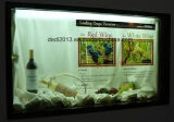 17 '' LCD transparente Showbox para la visualización de Asvertisng