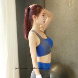 Alta calidad de la mujer ropa de Yoga Fitness Quick-Drying Bra de desgaste
