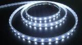 5050 SMD LED 지구 빛