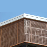 Aluminum su ordine Panel per Facade Cladding e Decoration