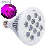 24W E27 LED는 플랜트 과일 야채를 위해 가볍게 증가한다