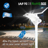 Tout en un seul/LED intégrée jardin extérieur la lumière solaire