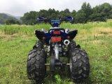 아이를 위한 가득 차있는 자동적인 기어를 가진 스포츠 ATV 쿼드 110cc