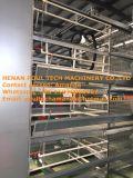 De volledige Automatische Gegalvaniseerde (het Frame van het Type van H) Apparatuur van de Kooi van de Laag van de Batterij voor Kip