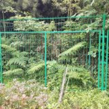 Galvanized&PVC revestiu a cerca do engranzamento soldado