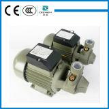 QB60 0.5HP 작은 와동 정원 수도 펌프