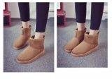 Classic Zapatos de invierno botas para mujer