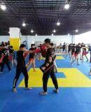 Couvre-tapis de verrouillage d'étage de mousse de Taekwondo de type d'art martial