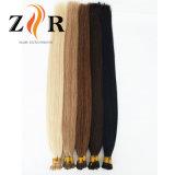 暗い色の倍によって引かれるインドの毛の小さい先端の毛の拡張