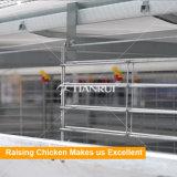 Автоматическое оборудование цыплятины фермы цыпленка клетки слоя для сбываний