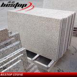 Comptoir en granite de précoupe de cuisine pour des projets