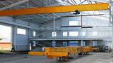 Kraan van de Brug van de Balk van de fabrikant de Enige Lucht Reizende 5 Ton