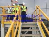 Échelle mise en cage par FRP/GRP modèle de fibre de verre d'Assemblée, clôturant le système, escaliers, chariot