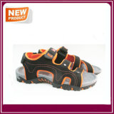 Sandelholz-Schuh-heißer Verkauf der Sport-Form-Männer