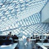 Kundenspezifische Metallgitter-Decke für Innen- und Außendekoration