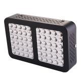 Lo spettro completo più poco costoso all'ingrosso LED di 600W 1000W 1200W 2400W coltiva gli indicatori luminosi