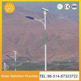 環境保護の高品質12V/24V220Vの風の太陽街灯
