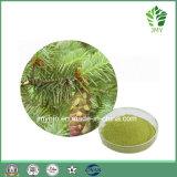 Extrait de plante Pure et Naturelle Anti-Oxidant Dihydroquercetin/Distylin 80 % Taxifoliol/~98 %
