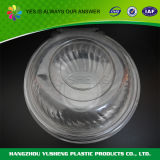 Transparenter Plastik eingehängter Kappen-Behälter, Salat-Filterglocke für herausnehmen