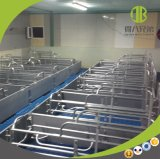 Producción caliente de la venta para el embalaje de parto de la granja de cerdo