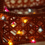 In het groot LEIDEN van de Vorm van de Vlinder Decoratief Licht