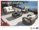 PE as medulas e mobiliário de alumínio, sofá de vime exterior (TG-025)