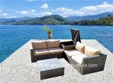 Mobilia esterna del sofà del giardino dei 2017 nuovi di disegno vimini/rattan