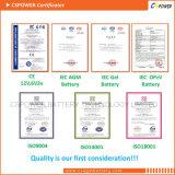 batterie d'accumulateurs solaire de 12V 300ah pour des zones sensibles