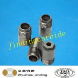 Zhuzhou Tungsten Carbide Spray Oil Nozzle pour l'industrie des pompes à huile