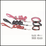 反射ステッチおよび足プリントが付いているハイエンドドッグカラーおよび鎖セット