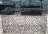 Casella rivestita di /Gabion del muro di sostegno del collegare Gabion/Gabion del PVC Galfan