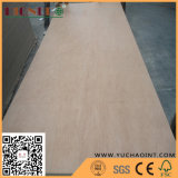 EPA Certificate Keruing Face Poplar Core Commercial Plywood