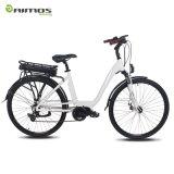 [700ك] يتيح راكب درّاجة كهربائيّة/[إبيك]/درّاجة كهربائيّة