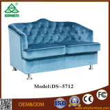 木フレームが付いている最新の居間のソファーデザイン2シートの余暇の家具のソファー