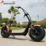 都市ココヤシの道の電気オートバイを離れた電気自転車のお偉方のスクーター