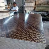 La película de la madera contrachapada 15/18m m del material de construcción hizo frente a la madera contrachapada
