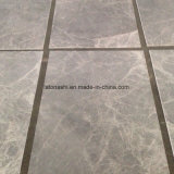Il marmo grigio copre di tegoli l'oscurità d'argento di Skyros per la parete ed il pavimento