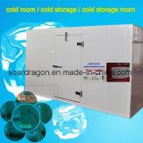 Pequenos e grandes quartos frios e freezers