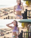 Bikini aperto sexy delle azione del merletto del raggruppamento della spiaggia viola di lustro