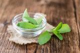 Stevia modificado do edulcorante enzima natural