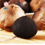 Alho preto de alta qualidade e alho preto feito de China 800g