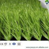 40-60см дешевые индивидуальные футбола синтетических трава на поле Wy-15