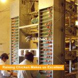 Cage de poulet de batterie de volaille utilisée par ferme de grande puissance à vendre