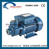 IDB-Serien-Turbulenz-Trinkwasser-Pumpe (IDB35/IDB40/IDB50)
